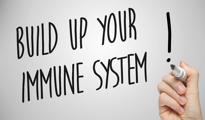 Fermented foods and probiotics help in boosting your immune system