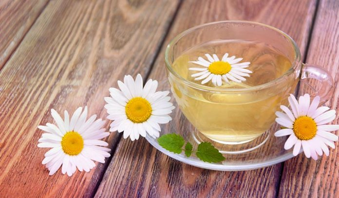 Chamomile tea has antispasmodic, anti-inflammatory, and carminative properties