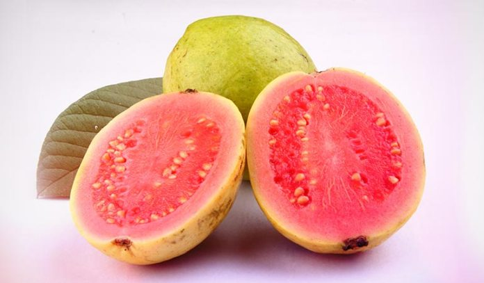 Guave is high in the concentration of the anticancerous antioxidant known as lycopene.