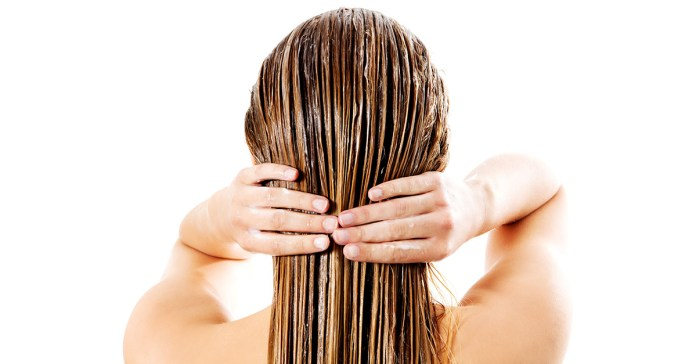 omemade hair conditioner recipes.