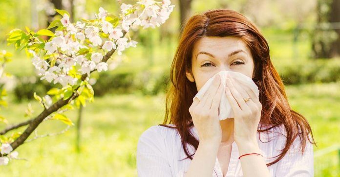 Summer Allergens You Should Avoid
