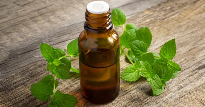 Surprising Ways To Start Using Peppermint Oil