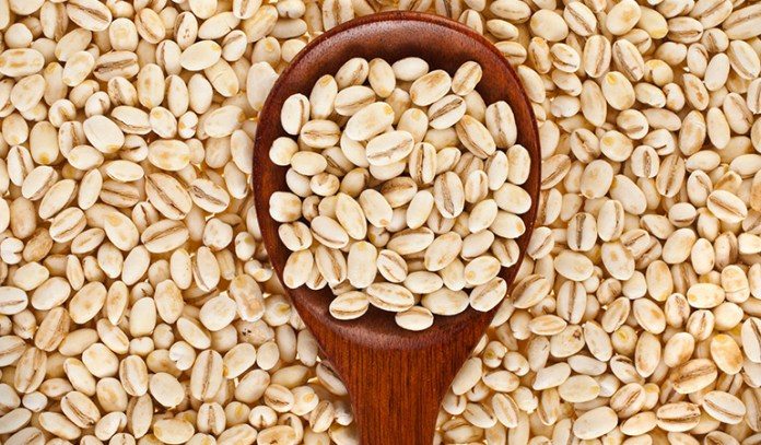 Barley is high in fiber and low in fat