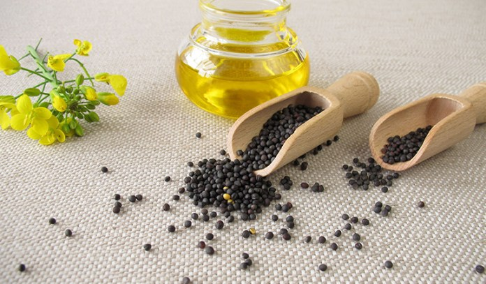 Canola oil aids weight loss and promotes heart health.