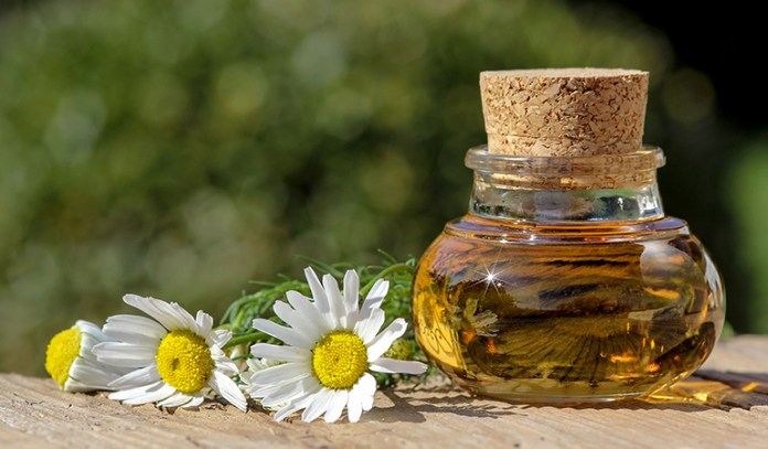 Chamomile suppresses inflammation and inhibits spreading of cancer cells