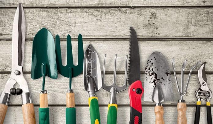 Even indoor plants require a set of simple gardening tools