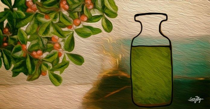 health benefits of wintergreen essential oil