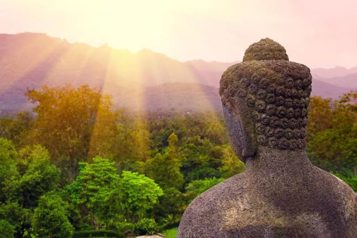 Meditation is a powerful practice that reduces stress, improves health and increases lifespan
