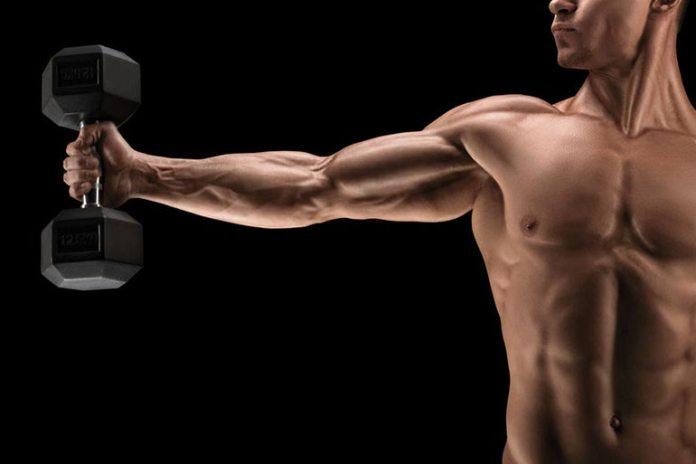 1-2 Pounds Is A Safe Muscle Gain Limit