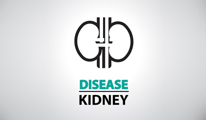 Excess Proteins Can Cause Kidney Abnormalities
