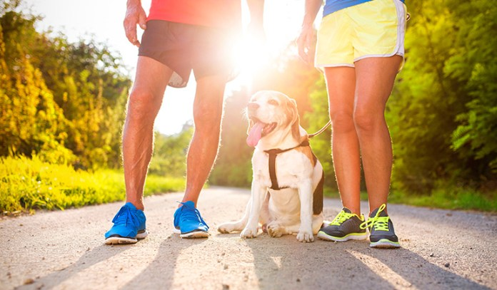 Working out to songs and taking your pet for a run can make exercising a lot less boring.