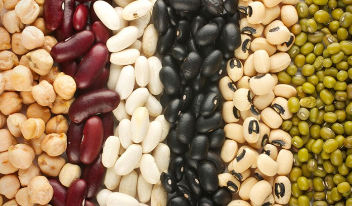 Non-meat eaters can get protein through balanced plant sources