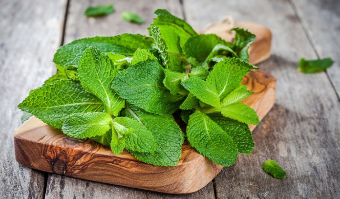 Peppermint reduces diarrhea, bloating, and gas