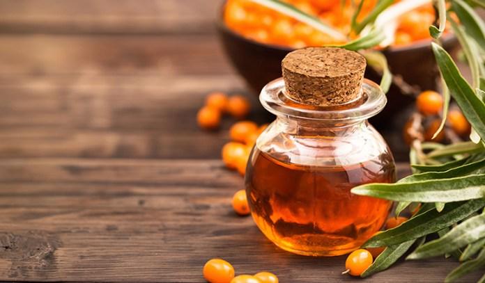 Sea buckthorn oil alleviates atrophy symptoms