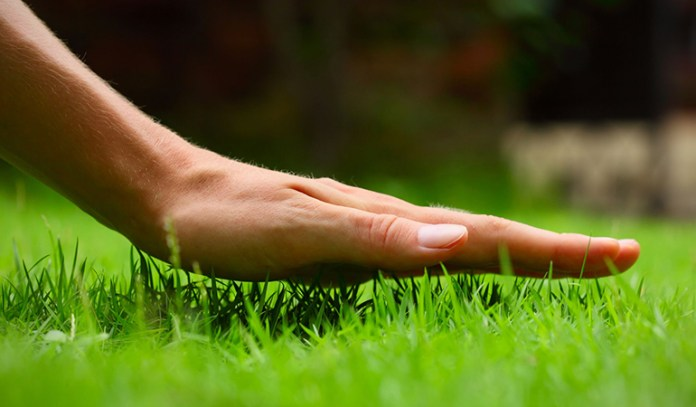 Your skin's contact with the ground is called earthing.