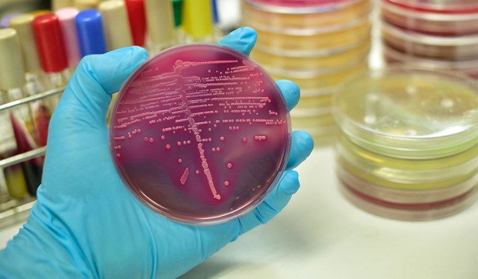Microbes are growing resistant to antibiotics