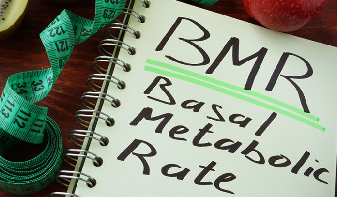 A High BMR Depends On The Genes