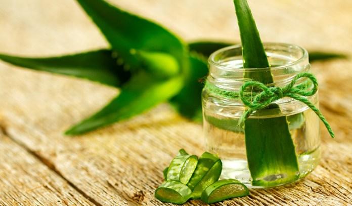 Aloe vera heals skin.