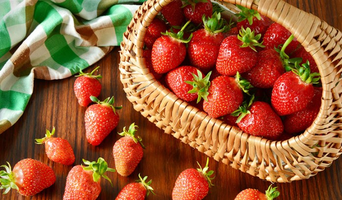 Berries are an excellent antioxidant