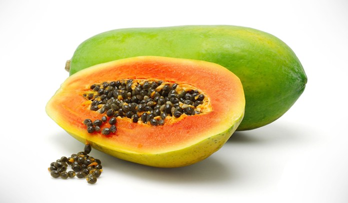 Genetically modified papayas may cause antibiotic resistance