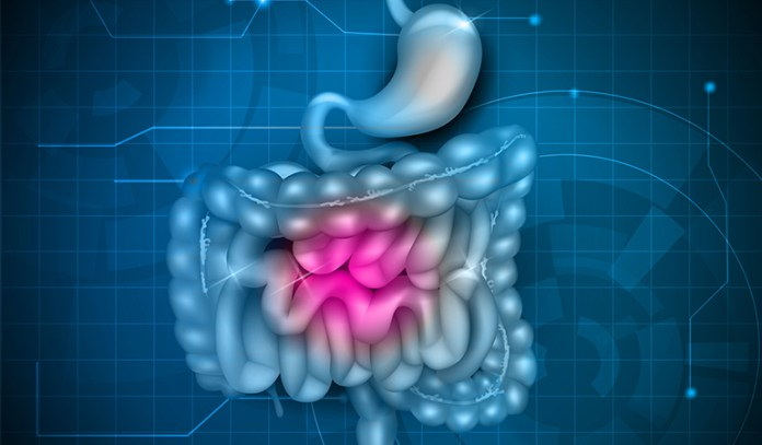 The cells of your stomach lining and small intestine are regularly replaced.