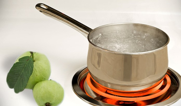 Guava leaves can be boiled in water and the solution can be used for hair growth