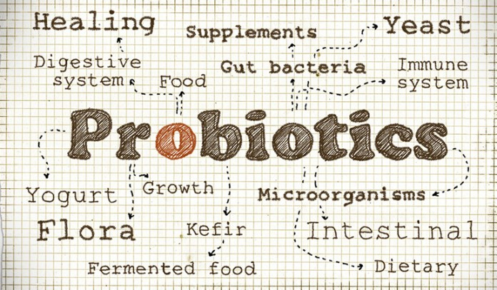 Keep your gut healthy with probiotics like yogurt