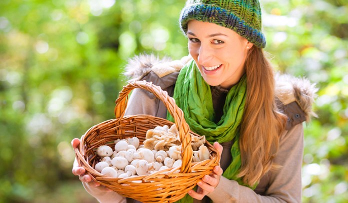 Studies show that mushrooms help in weight loss
