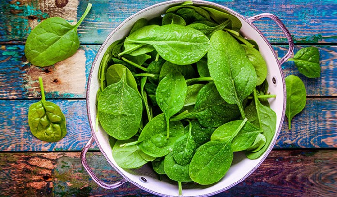 A cup of boiled fresh spinach has 0.166 gm of ALA