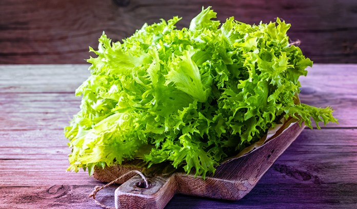 One cup of shredded lettuce has 133 mcg RAE of vitamin A.