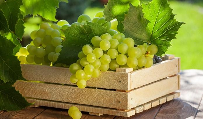 1 cup of grapes has 22 mcg of vitamin K (18.3% DV).
