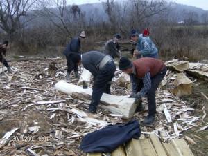 hoti lemne