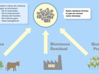 central electrica de biomasa - como funciona