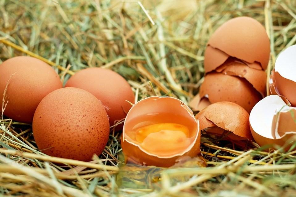Los huevos crudos pueden tener salmonella