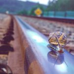Un caracol detiene la red de trenes de alta velocidad en Japón