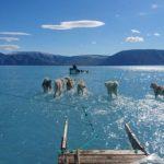 El mundo, impactado con dos fotos que alertan sobre el cambio climático