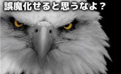 EagleEye WEB上の重複テキストを瞬時に見抜くツール