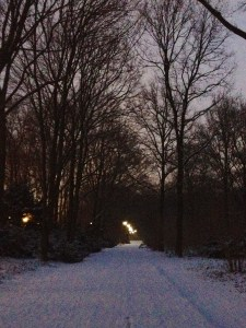 A beautiful, snowy walk through the Tiergarten