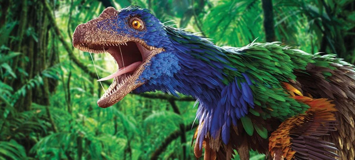 A colorful dinosaur with feathers