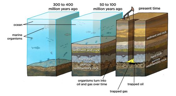 fossil fuels formation diagram