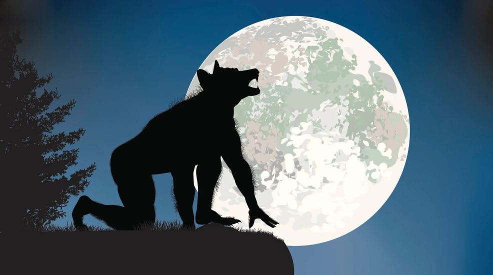 A human shape-shifts into a werewolf with a full moon in the background