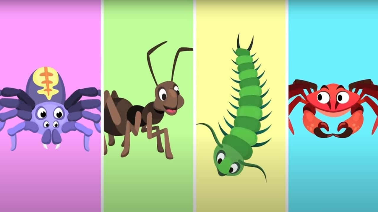 Invertebrate animals.