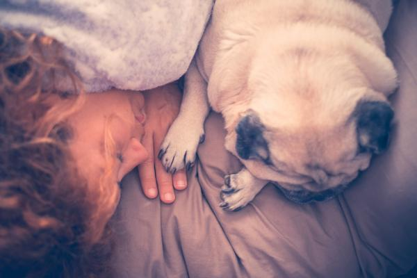 6 reasons why your dog sleeps with you - 6. He is showing you his love