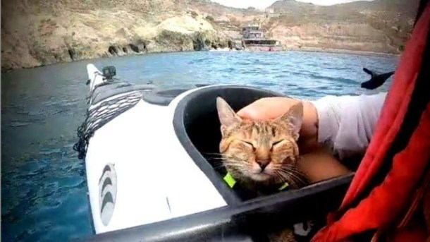 Dean shows affection for Nala in a kayak.