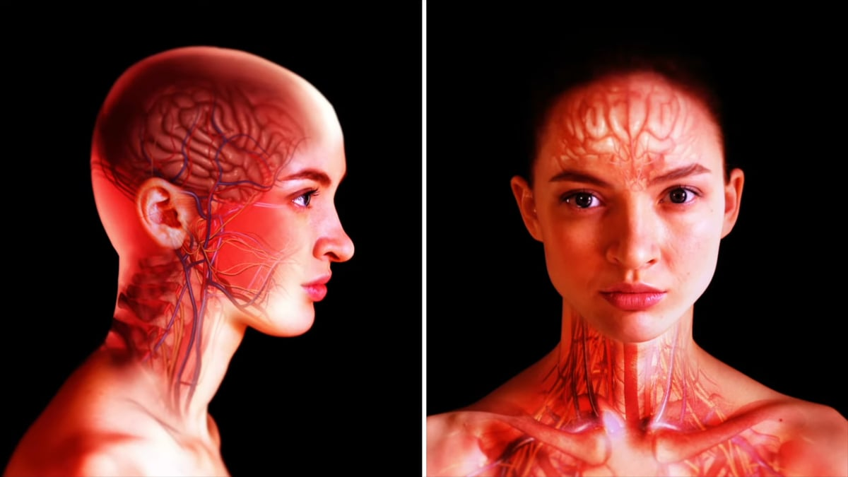 Skin tissue is an organ of the human body.