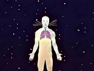 Effect of spaceflight on the human body.