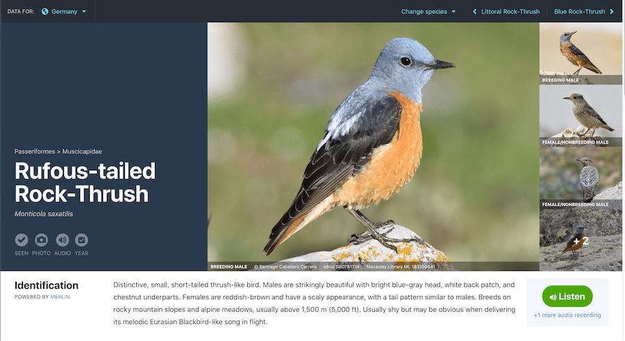 ebird citizen science website page