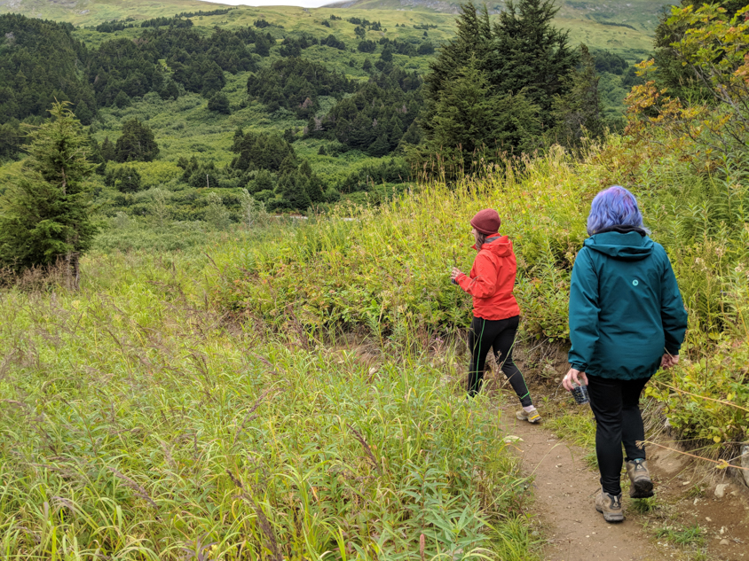 two girls walking along a forest path on the Glacier Discovery Train