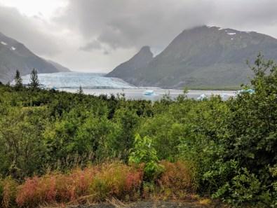 Spencer glacier in a misty forest