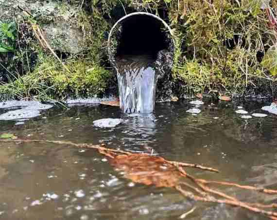 Eugh! Water companies released raw sewage into English waterways 400,000 times last year